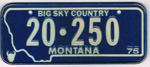 Montana Bicycle License Plate 1975