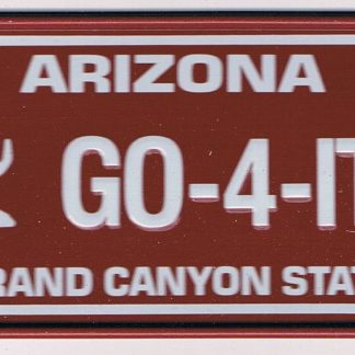 Arizona Bicycle License Plate 90