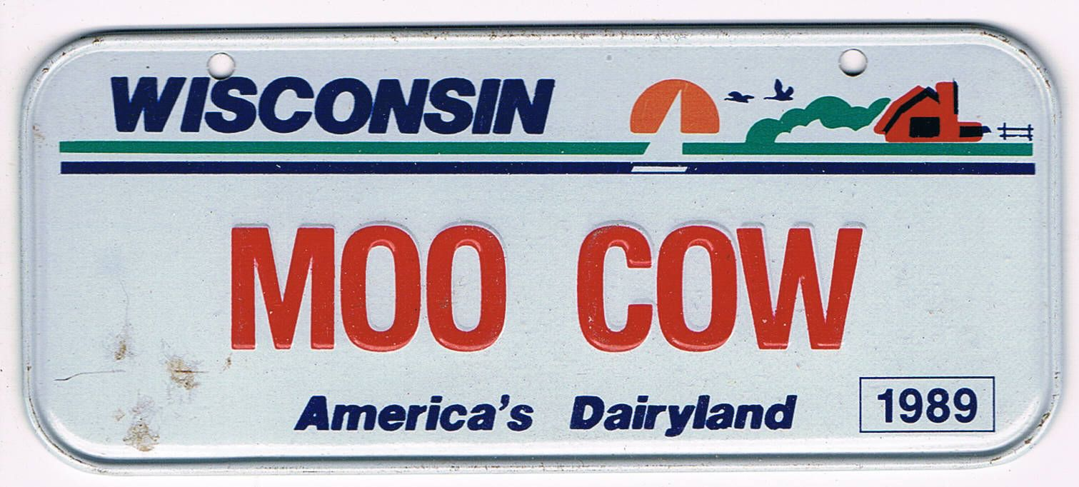 Wisconsin Bicycle License Plate 1989